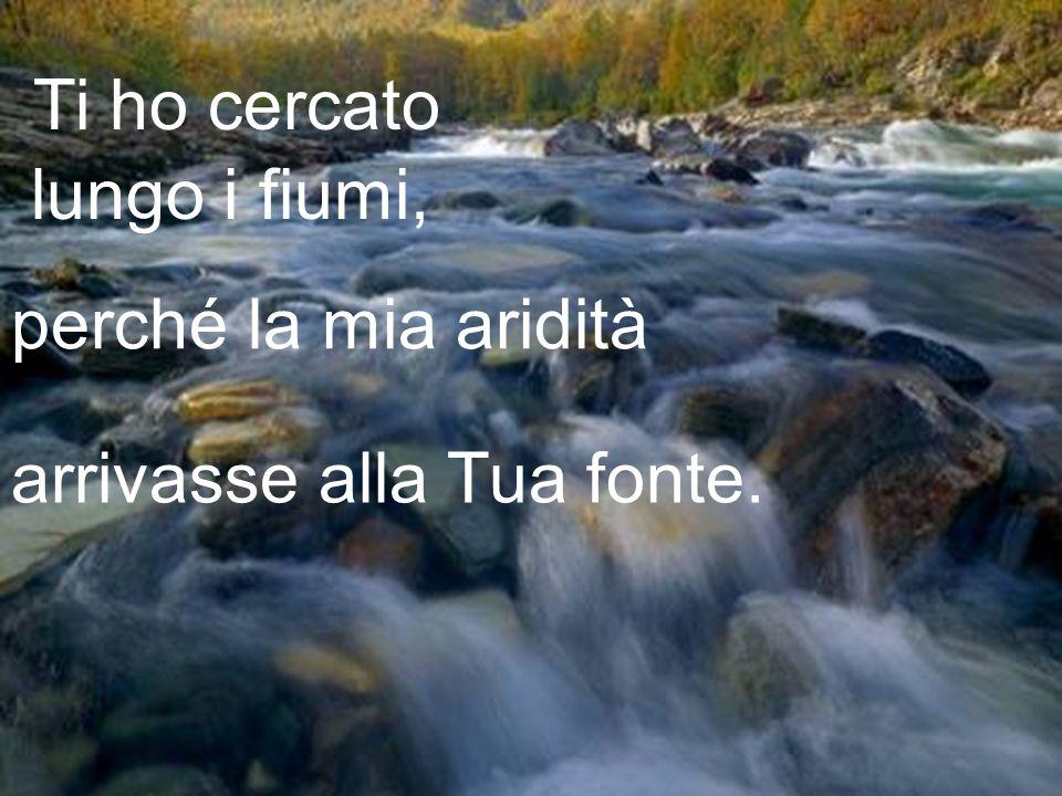 Ti ho cercato lungo i fiumi, perché la mia aridità