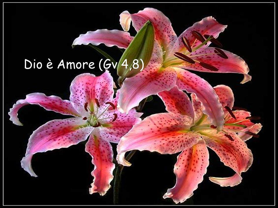 Dio è Amore (Gv 4,8) Dio è Amore (Gv 4,8)