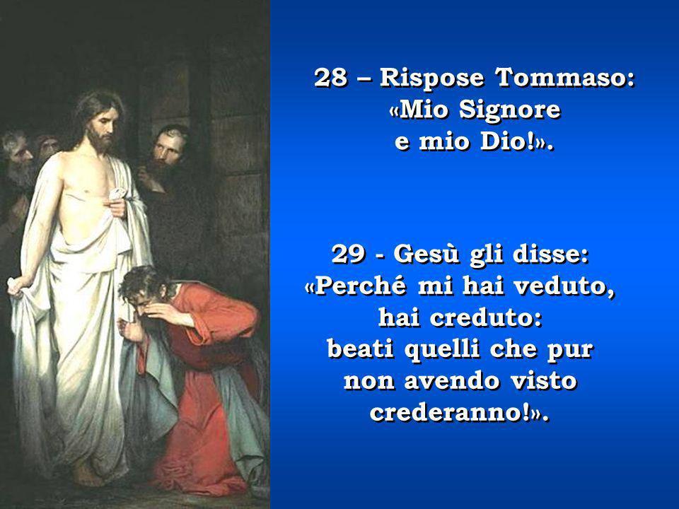 28 – Rispose Tommaso: «Mio Signore. e mio Dio!». 29 - Gesù gli disse: «Perché mi hai veduto, hai creduto: