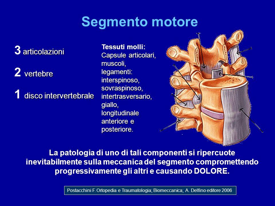 Segmento motore 3 articolazioni 2 vertebre 1 disco intervertebrale