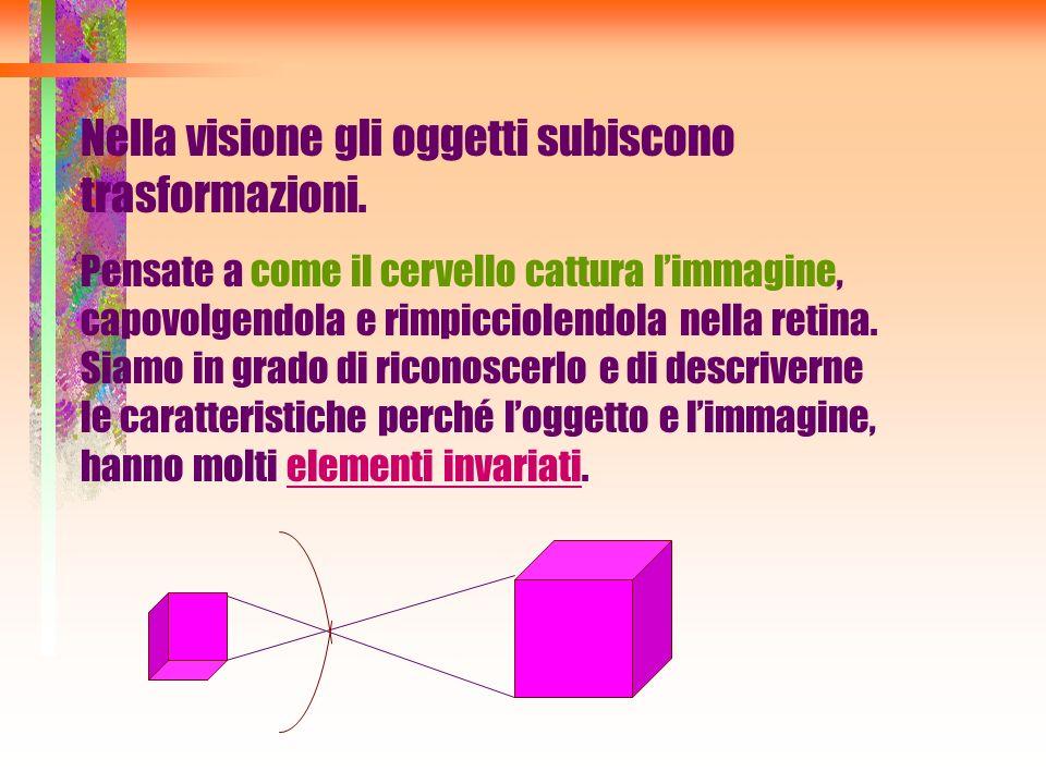 Nella visione gli oggetti subiscono trasformazioni.