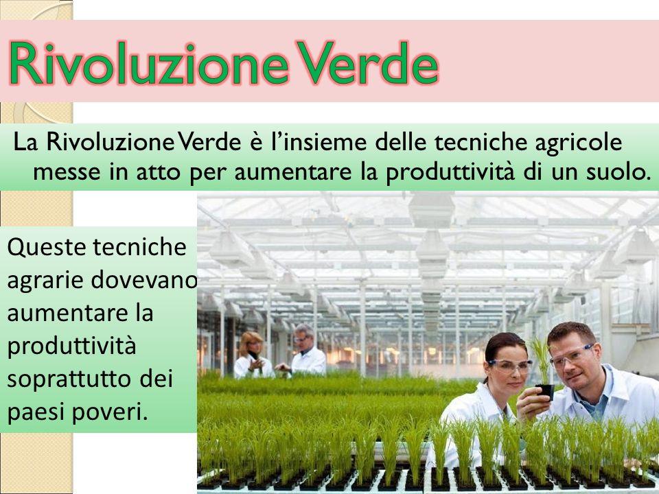 Rivoluzione Verde La Rivoluzione Verde è l'insieme delle tecniche agricole messe in atto per aumentare la produttività di un suolo.