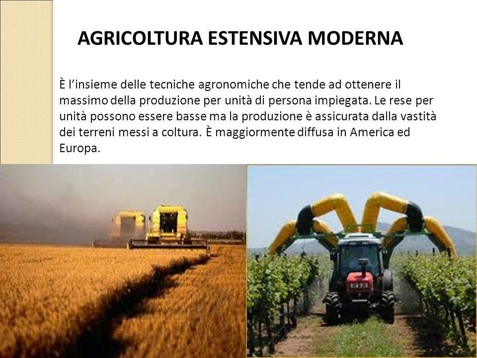 AGRICOLTURA ESTENSIVA MODERNA