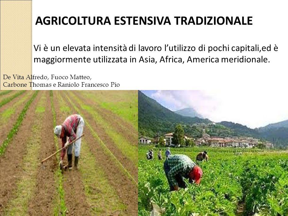 AGRICOLTURA ESTENSIVA TRADIZIONALE