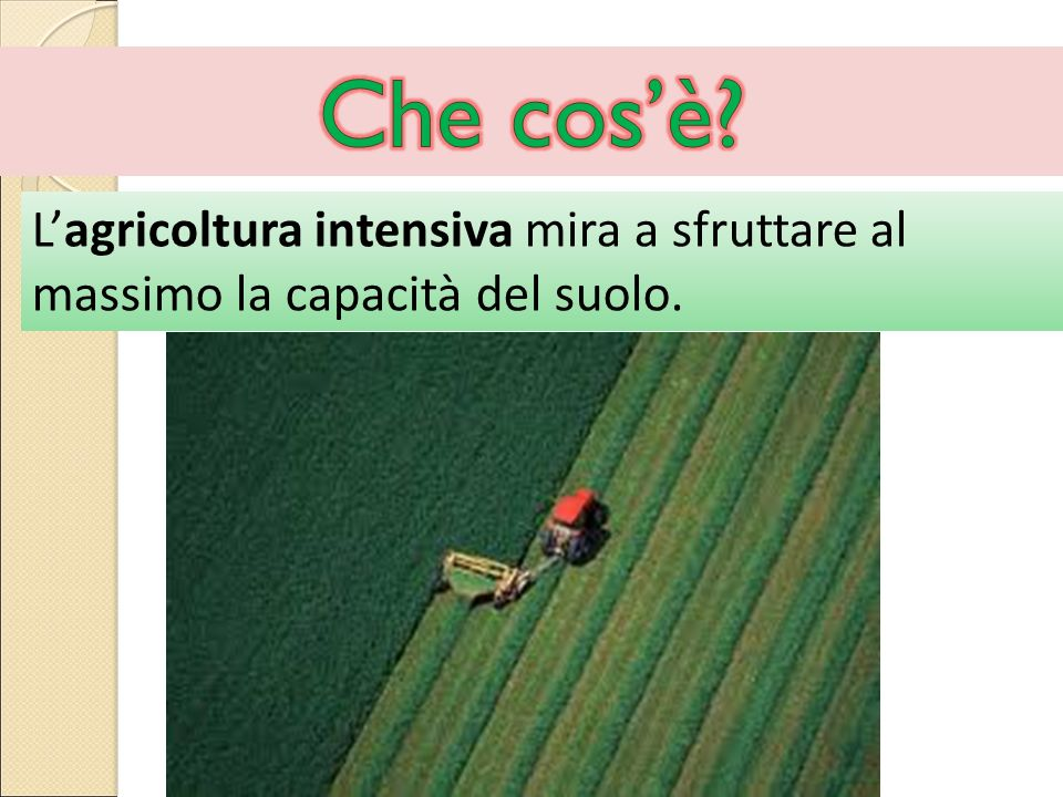 Che cos'è L'agricoltura intensiva mira a sfruttare al massimo la capacità del suolo.