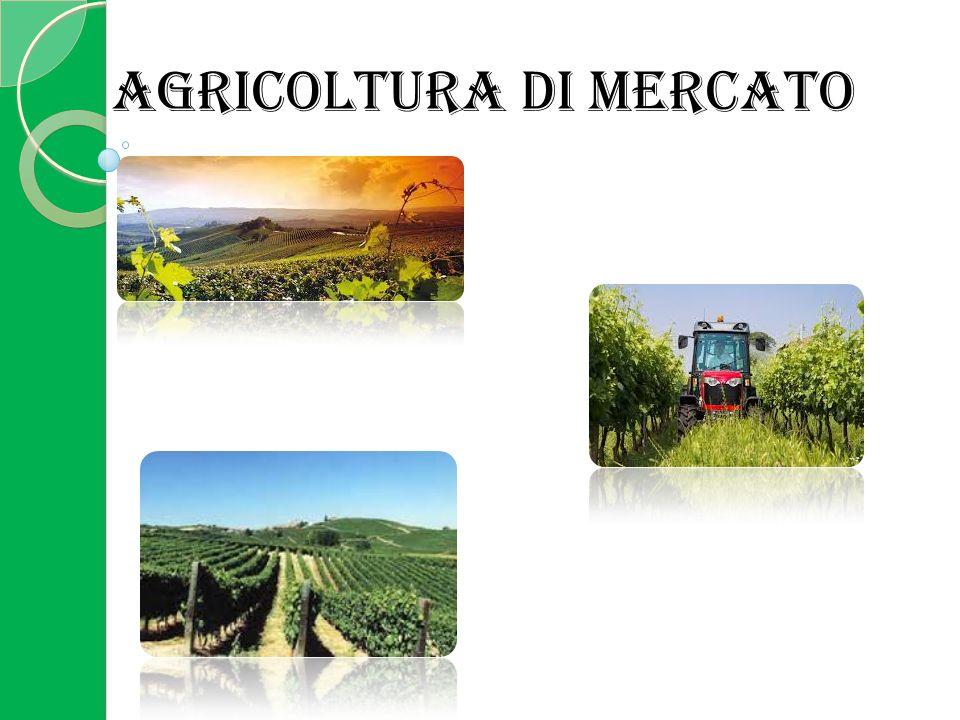 AGRICOLTURA DI MERCATO