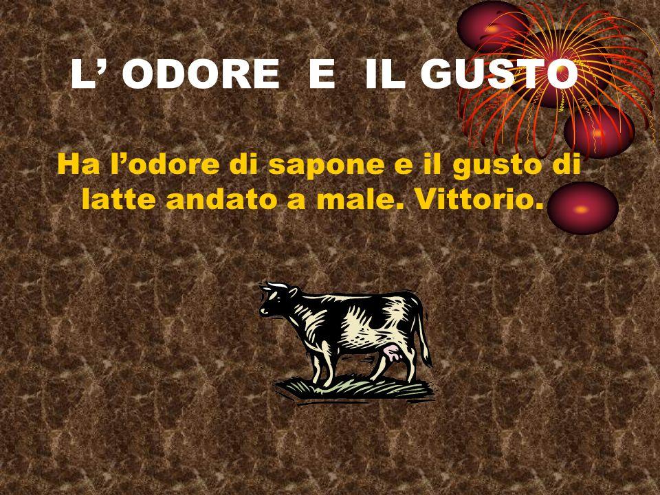 L' ODORE E IL GUSTO Ha l'odore di sapone e il gusto di latte andato a male. Vittorio.