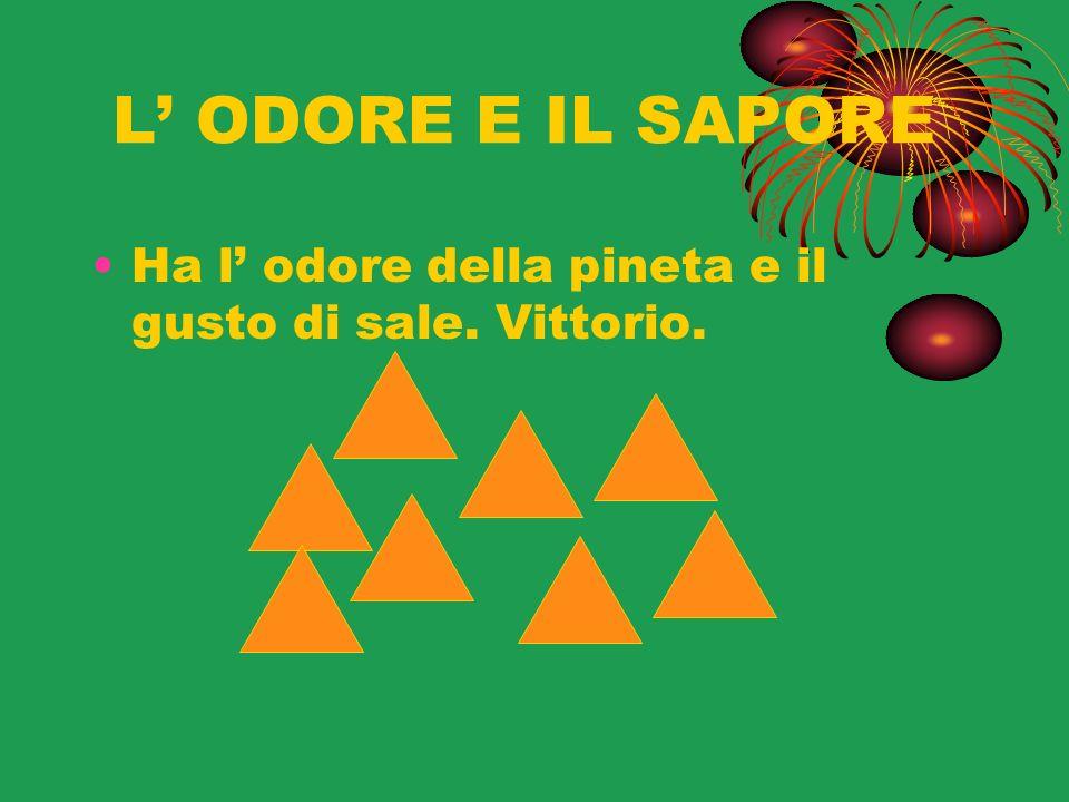 L' ODORE E IL SAPORE Ha l' odore della pineta e il gusto di sale. Vittorio.