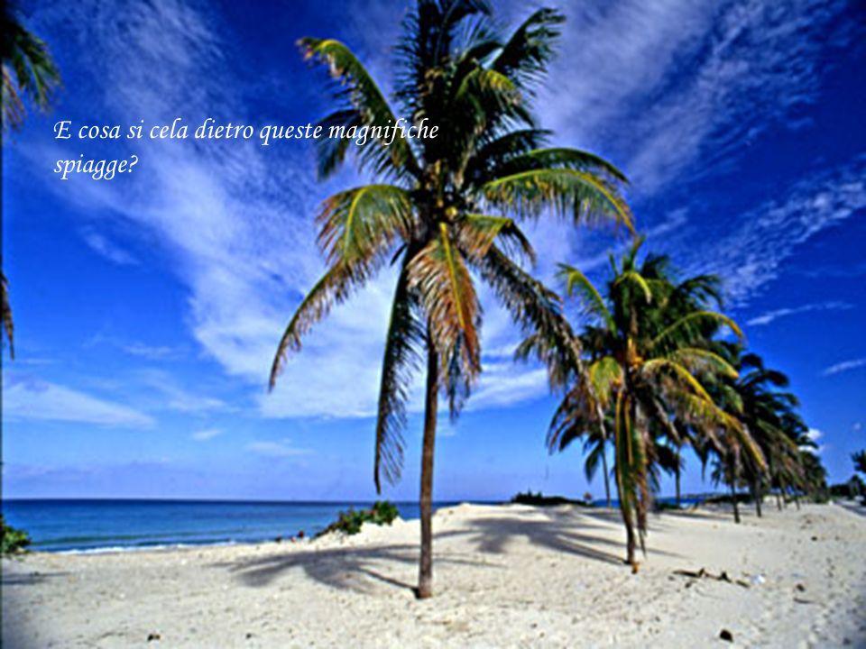 E cosa si cela dietro queste magnifiche spiagge