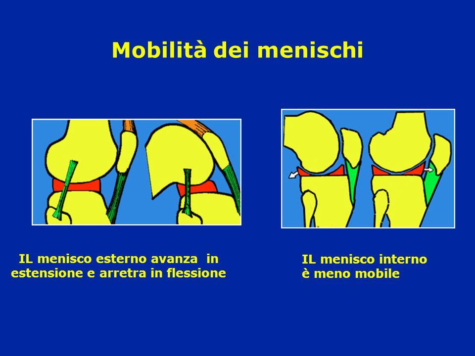 IL menisco esterno avanza in estensione e arretra in flessione