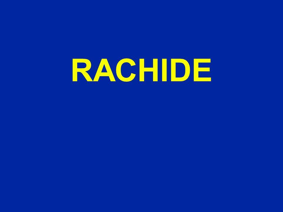 RACHIDE