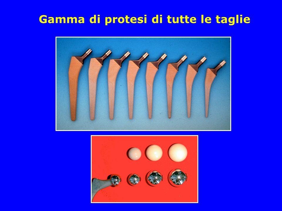 Gamma di protesi di tutte le taglie