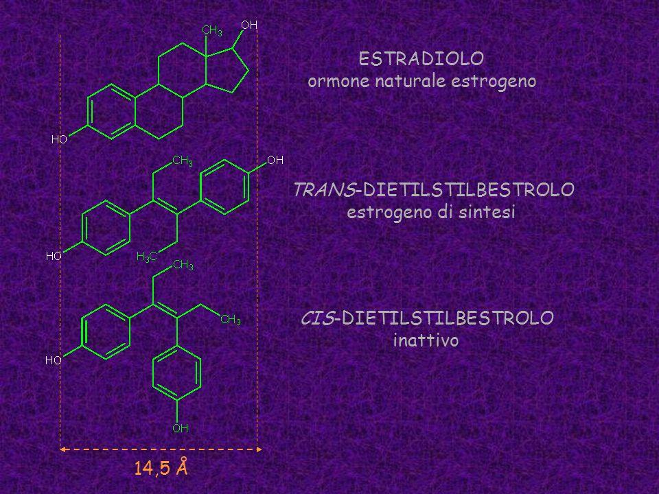 ormone naturale estrogeno