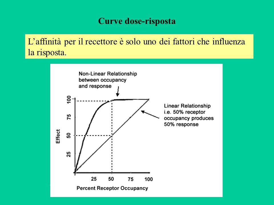 Curve dose-risposta L'affinità per il recettore è solo uno dei fattori che influenza la risposta. .