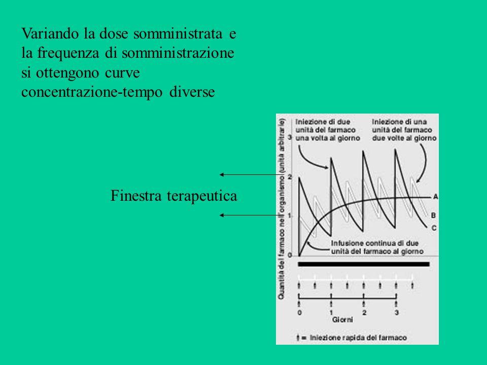 Variando la dose somministrata e la frequenza di somministrazione si ottengono curve concentrazione-tempo diverse