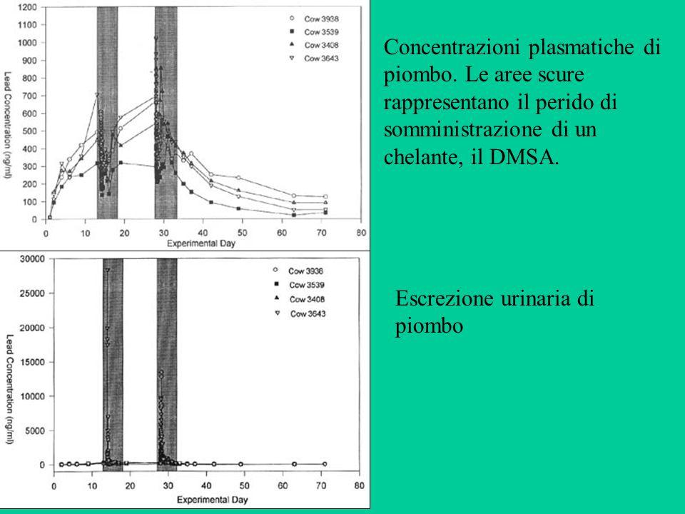 Concentrazioni plasmatiche di piombo