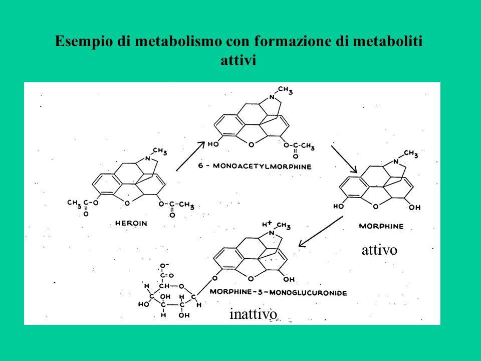 Esempio di metabolismo con formazione di metaboliti attivi