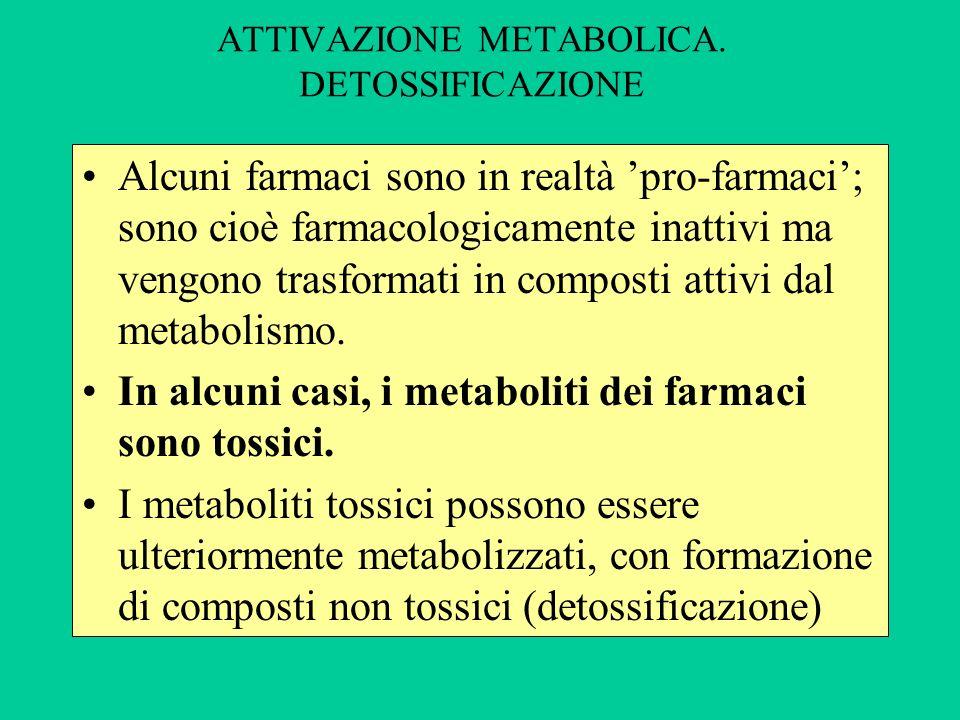ATTIVAZIONE METABOLICA. DETOSSIFICAZIONE
