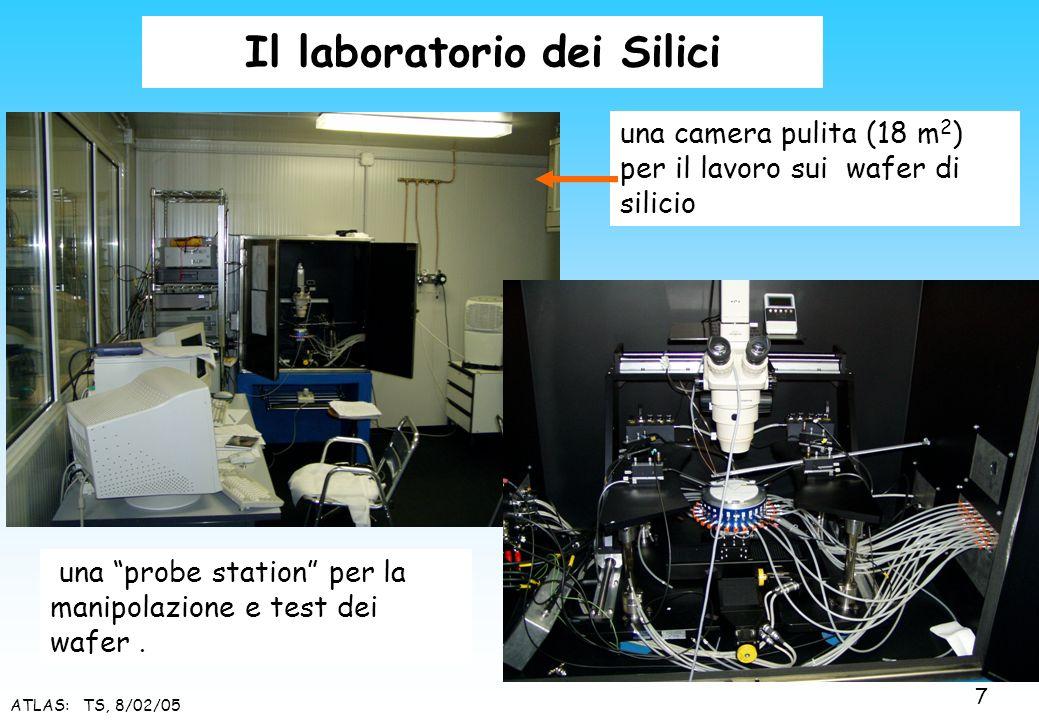 Il laboratorio dei Silici