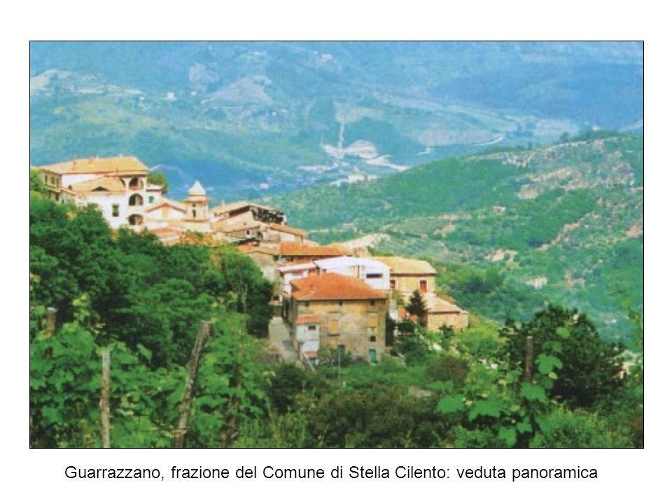 Guarrazzano, frazione del Comune di Stella Cilento: veduta panoramica
