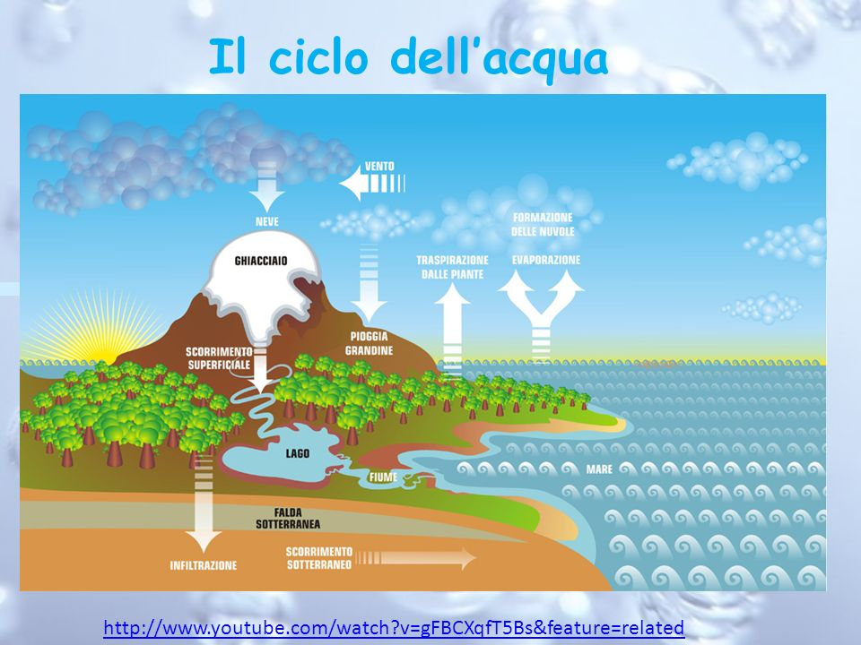 Il ciclo dell'acqua http://www.youtube.com/watch v=gFBCXqfT5Bs&feature=related