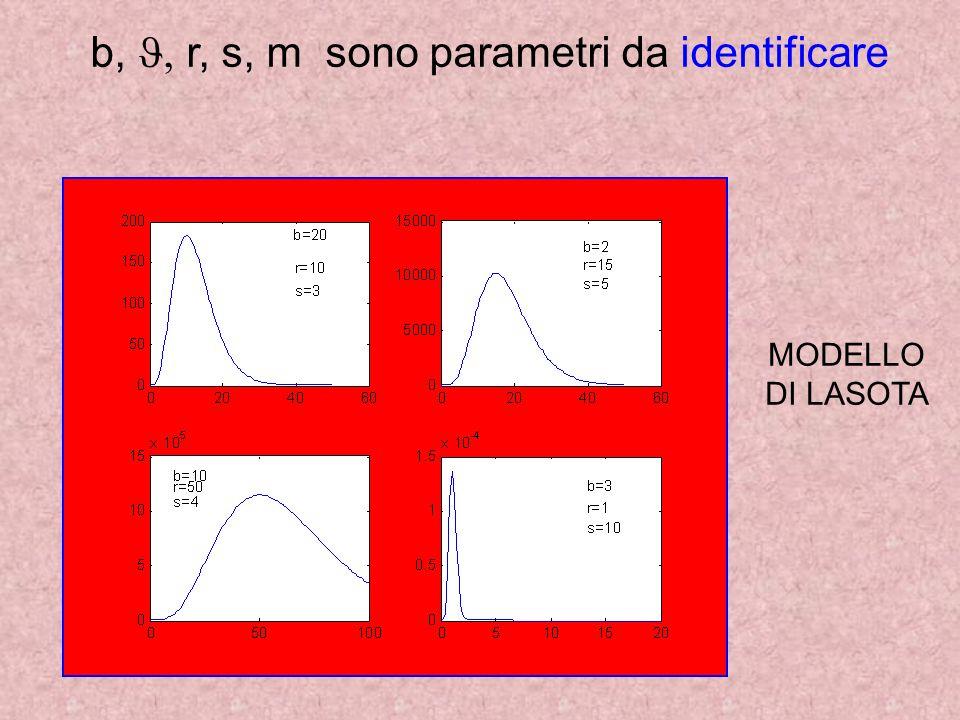 b, J, r, s, m sono parametri da identificare