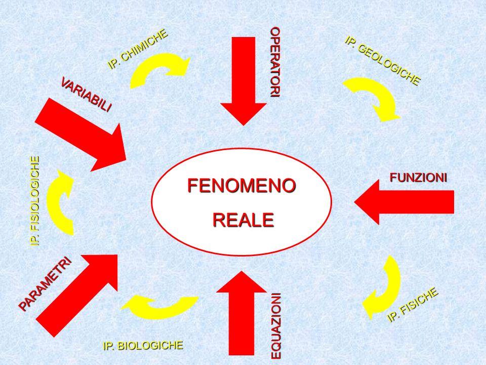 FENOMENO REALE OPERATORI VARIABILI FUNZIONI PARAMETRI EQUAZIONI