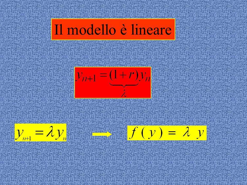 Il modello è lineare