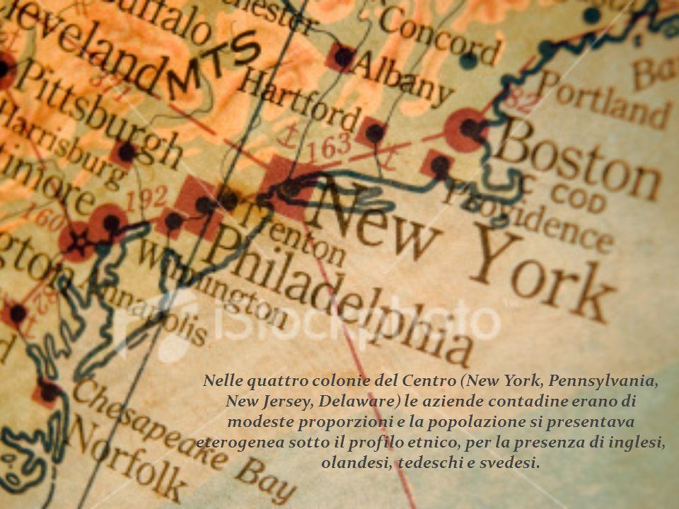 Nelle quattro colonie del Centro (New York, Pennsylvania, New Jersey, Delaware) le aziende contadine erano di modeste proporzioni e la popolazione si presentava eterogenea sotto il profilo etnico, per la presenza di inglesi, olandesi, tedeschi e svedesi.