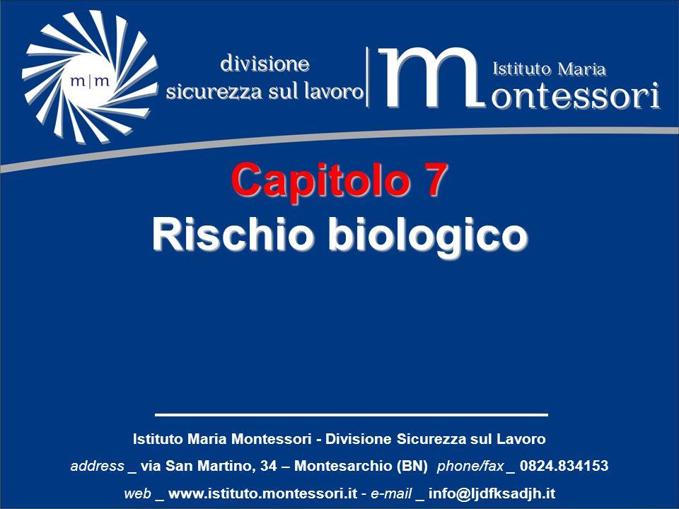 Istituto Maria Montessori - Divisione Sicurezza sul Lavoro