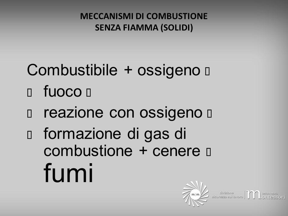 MECCANISMI DI COMBUSTIONE SENZA FIAMMA (SOLIDI)