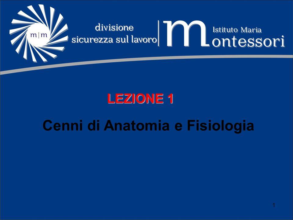 Cenni di Anatomia e Fisiologia