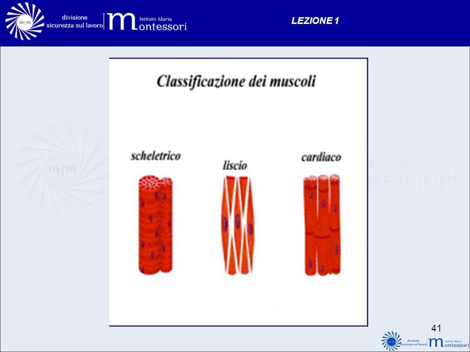 LEZIONE 1