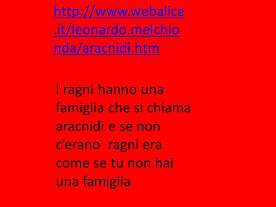 http://www.webalice.it/leonardo.melchionda/aracnidi.htm