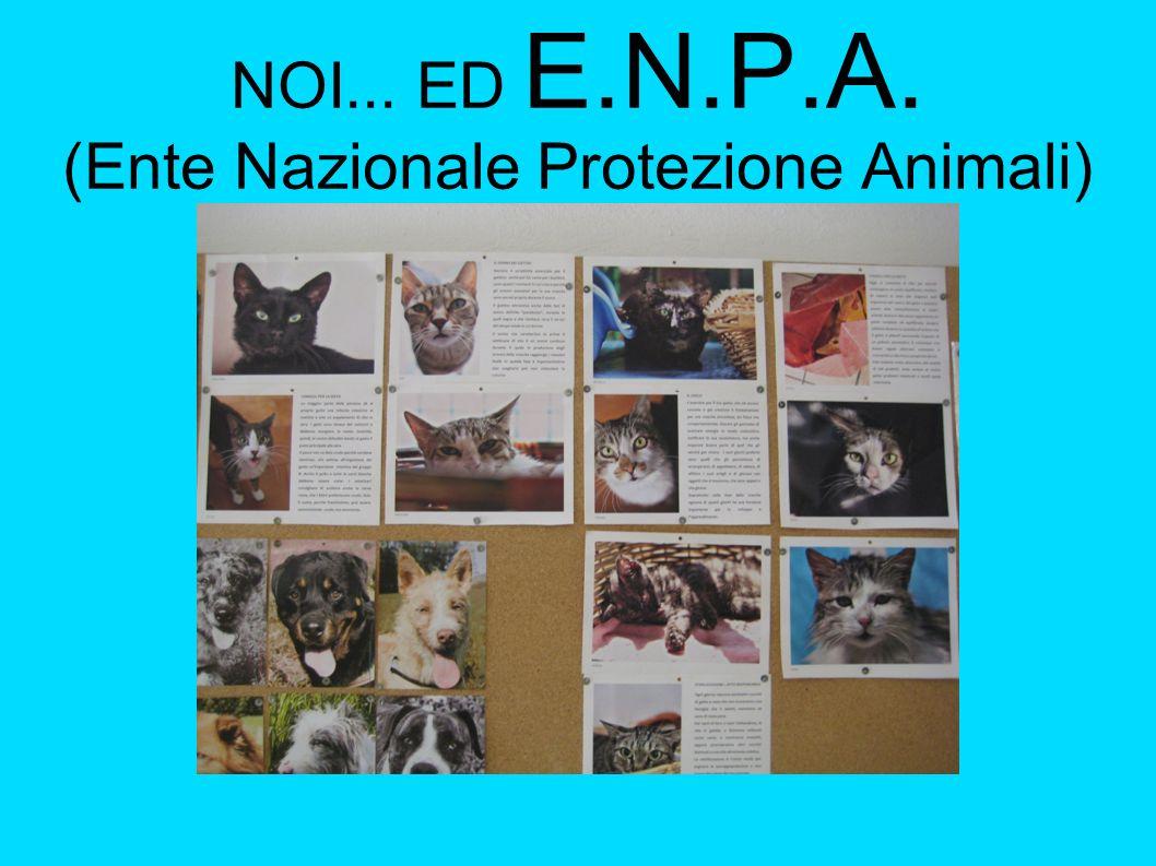 NOI... ED E.N.P.A. (Ente Nazionale Protezione Animali)