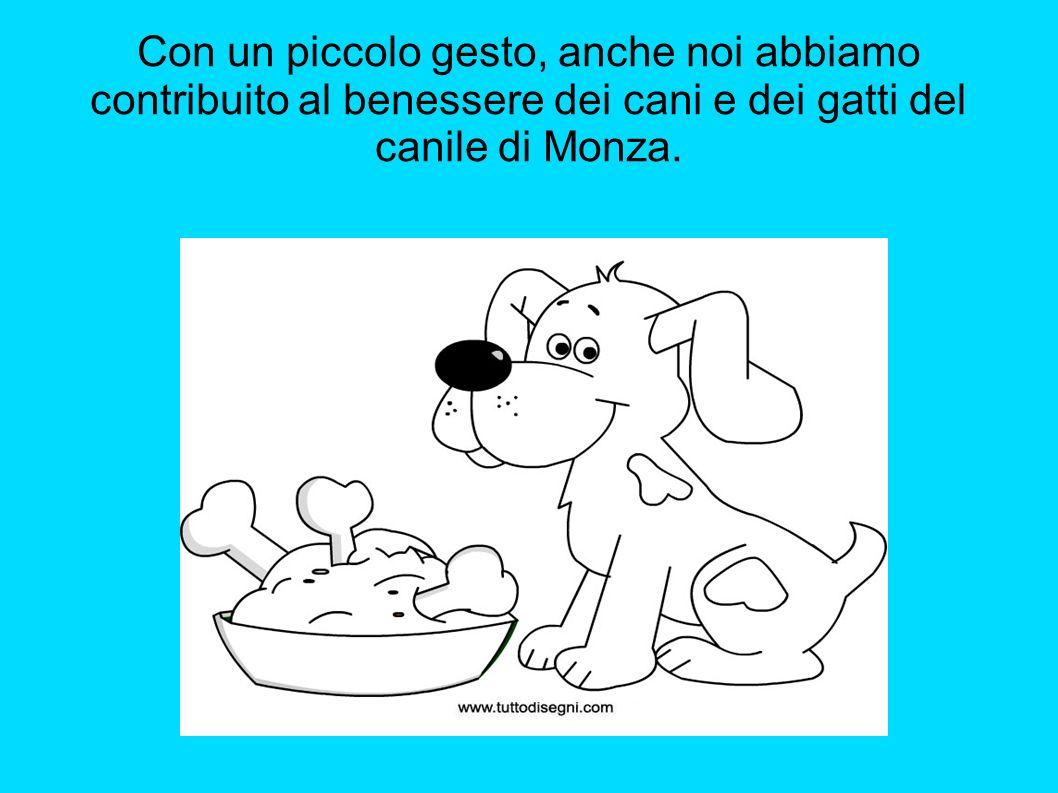 Con un piccolo gesto, anche noi abbiamo contribuito al benessere dei cani e dei gatti del canile di Monza.