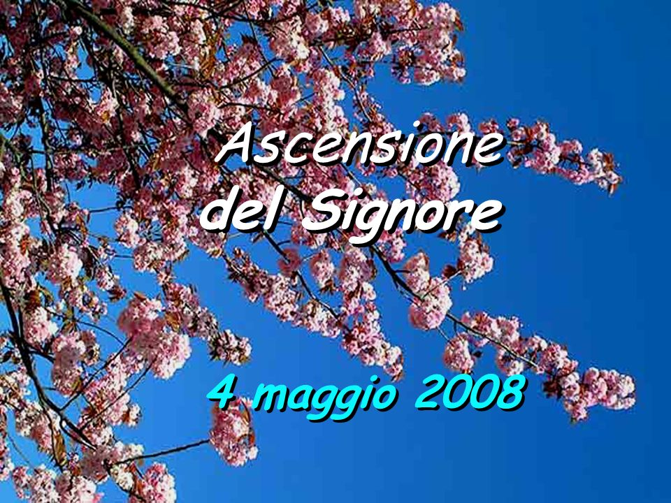 Ascensione del Signore 4 maggio 2008