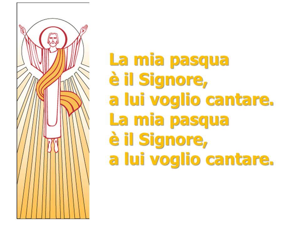 La mia pasqua è il Signore, a lui voglio cantare. La mia pasqua a lui voglio cantare.