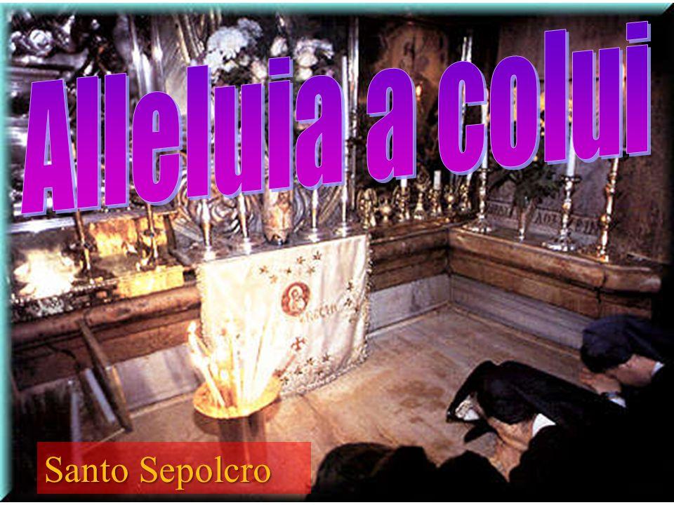 Alleluia a colui Santo Sepolcro