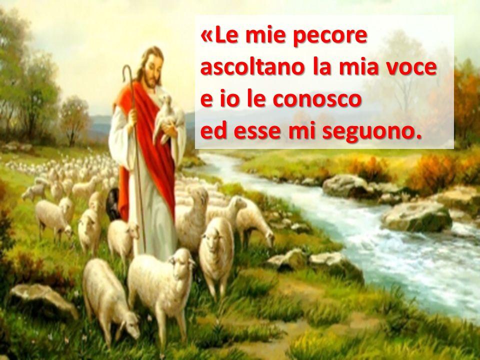 «Le mie pecore ascoltano la mia voce