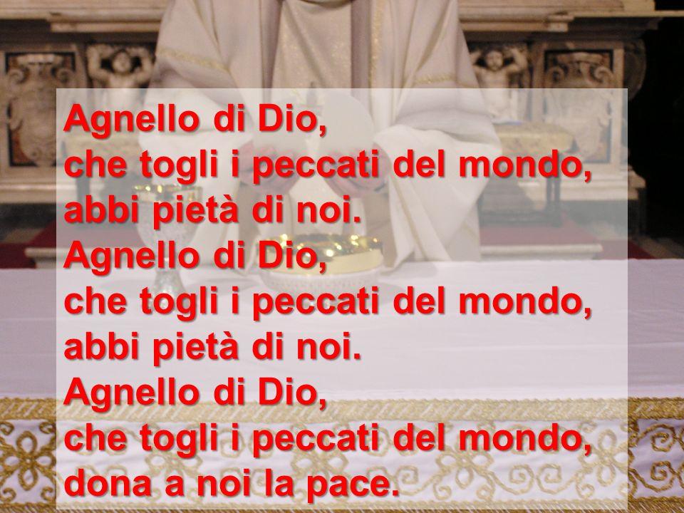 Agnello di Dio, che togli i peccati del mondo, abbi pietà di noi. dona a noi la pace.