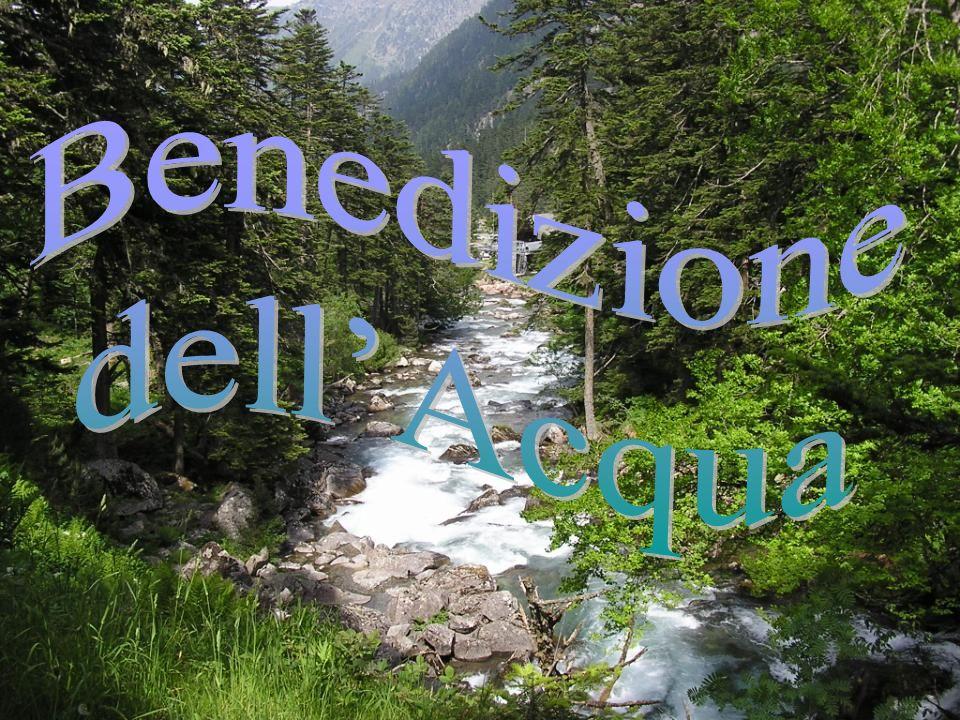 Benedizione dell'Acqua