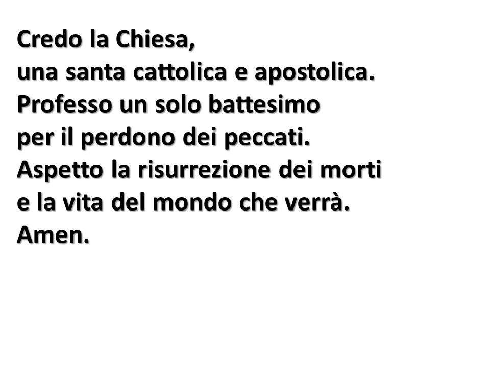 Credo la Chiesa, una santa cattolica e apostolica. Professo un solo battesimo. per il perdono dei peccati.