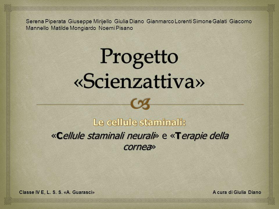 Progetto «Scienzattiva»