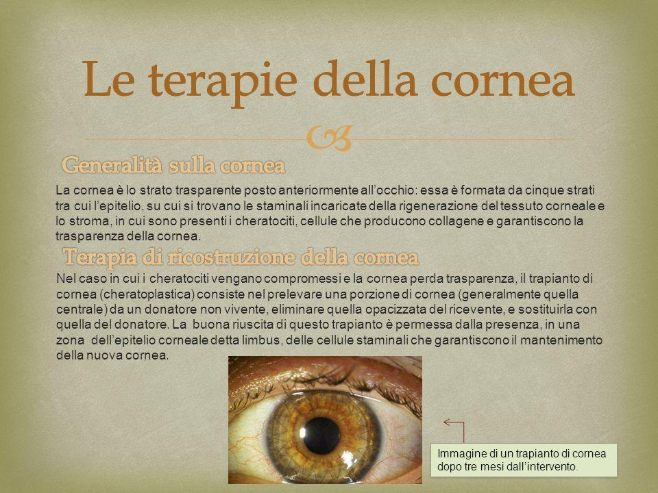 Le terapie della cornea