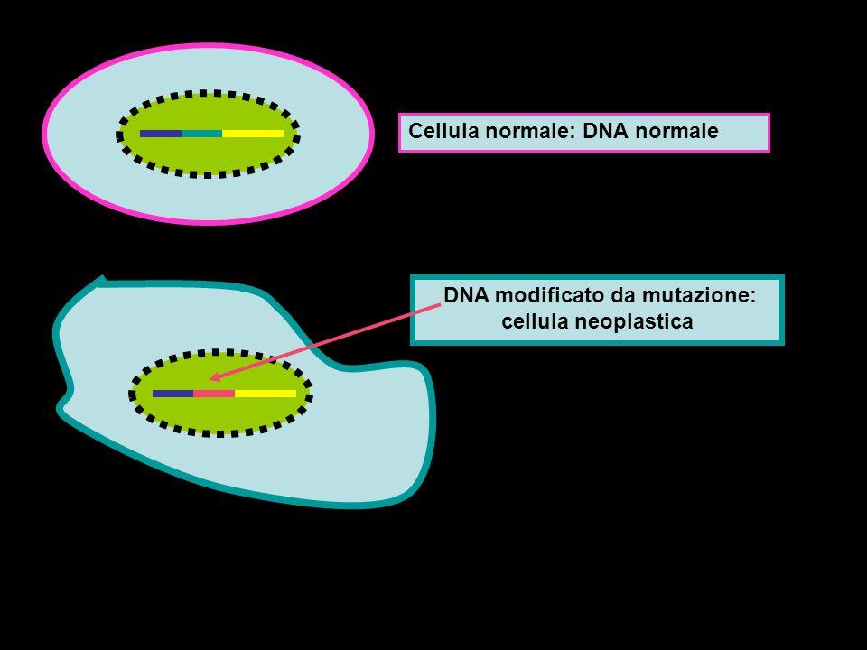 DNA modificato da mutazione: cellula neoplastica
