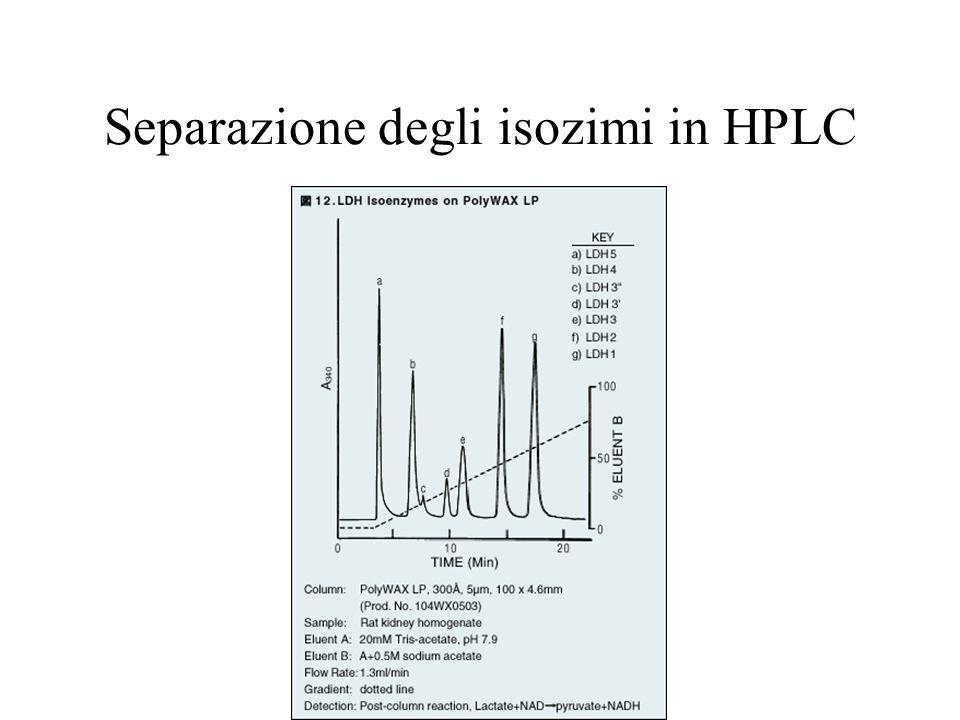 Separazione degli isozimi in HPLC
