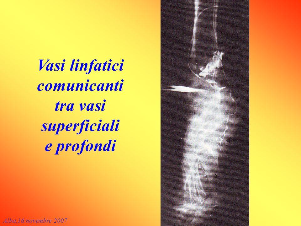 Vasi linfatici comunicanti tra vasi superficiali e profondi