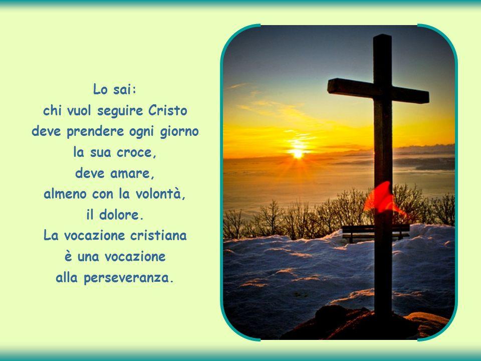 Lo sai: chi vuol seguire Cristo deve prendere ogni giorno la sua croce, deve amare, almeno con la volontà, il dolore.