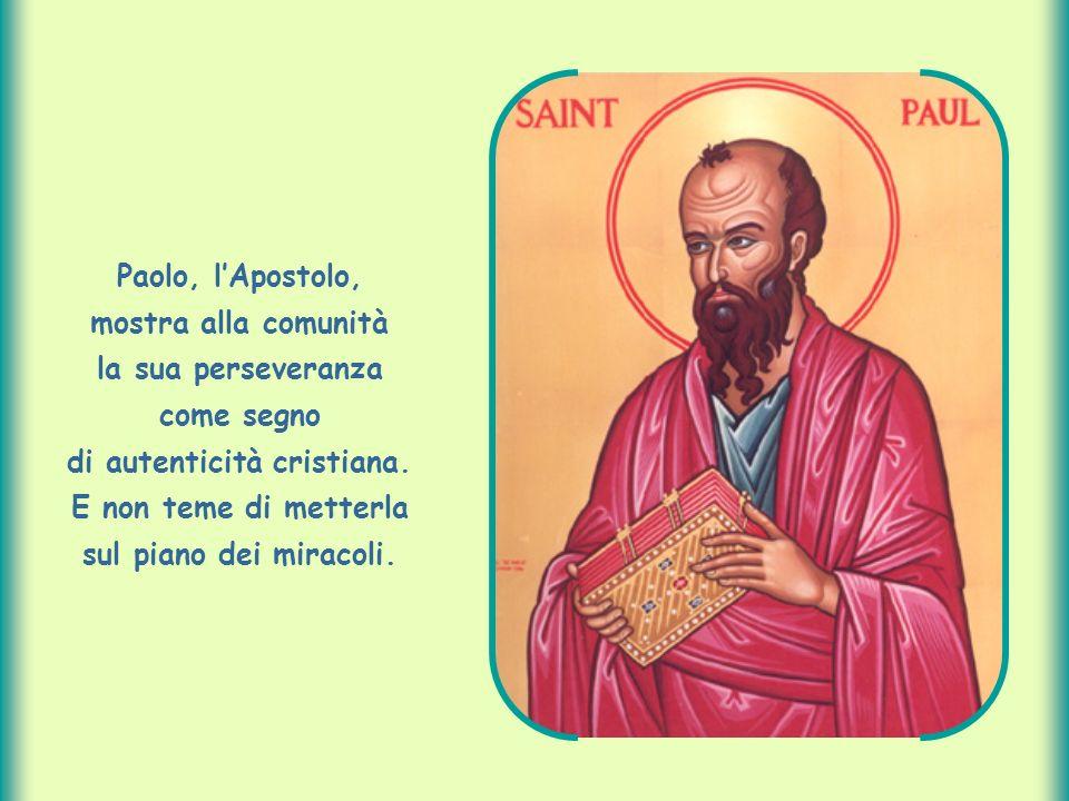 Paolo, l'Apostolo, mostra alla comunità la sua perseveranza come segno di autenticità cristiana.